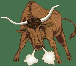toro-bull